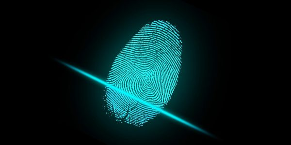 Flexible Fingerprint sensors in smartphones